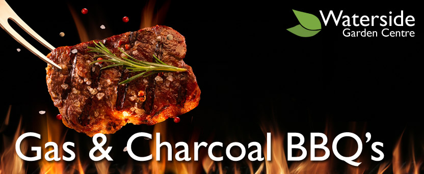 Gas & Charcoal BBQ Grills