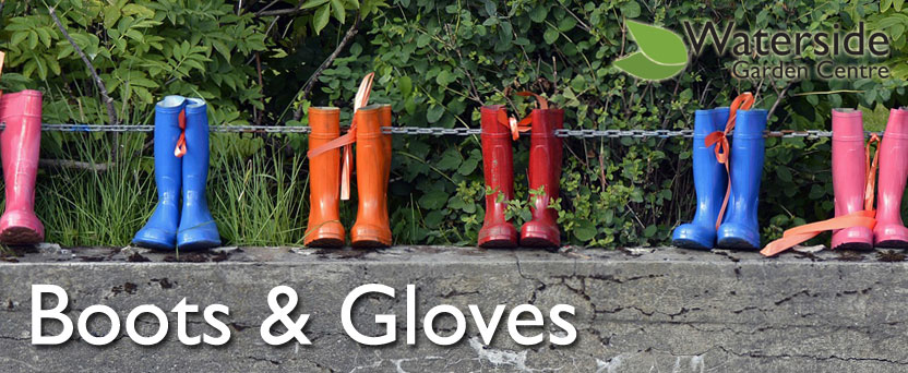 Boots & Gloves