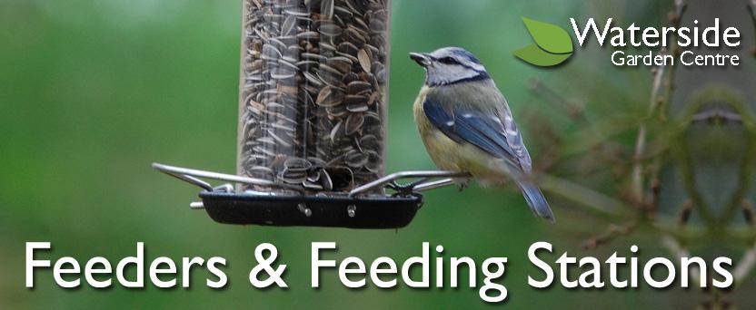 Feeders & Feeding Stations