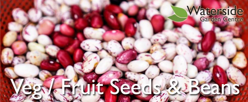 Vegetable / Fruit Seed & Beans
