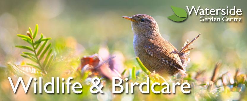 Wildlife & Birdcare
