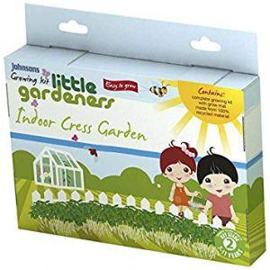Johnsons Little Gardeners - Indoor Cress Garden